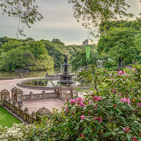 Central Park of Newyork