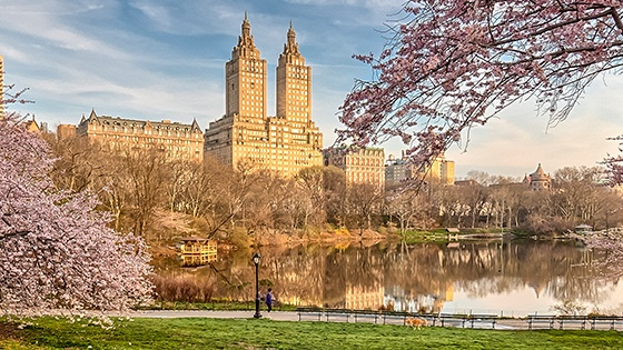 Upper West Side & Central Park Newyork